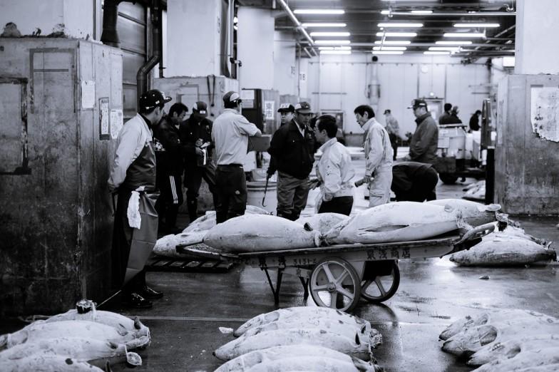 Tokyo_Fishmarket (10 von 16)
