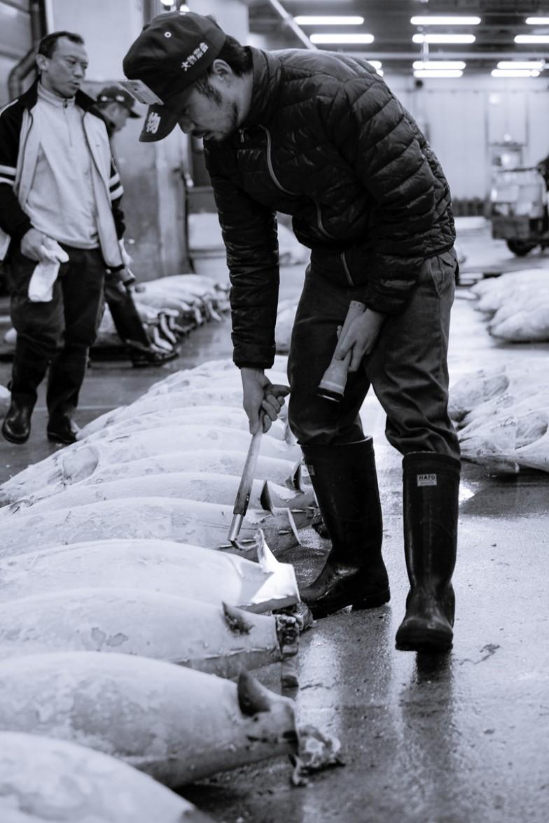 Tokyo_Fishmarket (3 von 16)