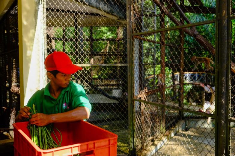 Yangon_Zoo-5
