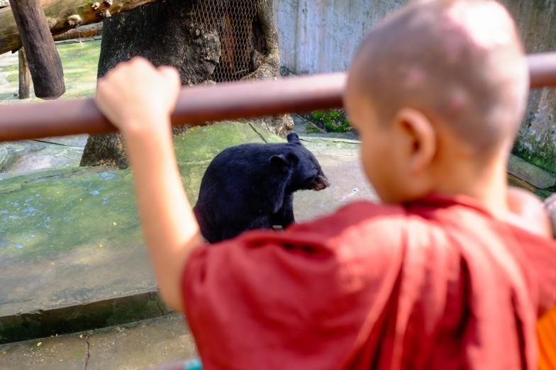 Yangon_Zoo-7
