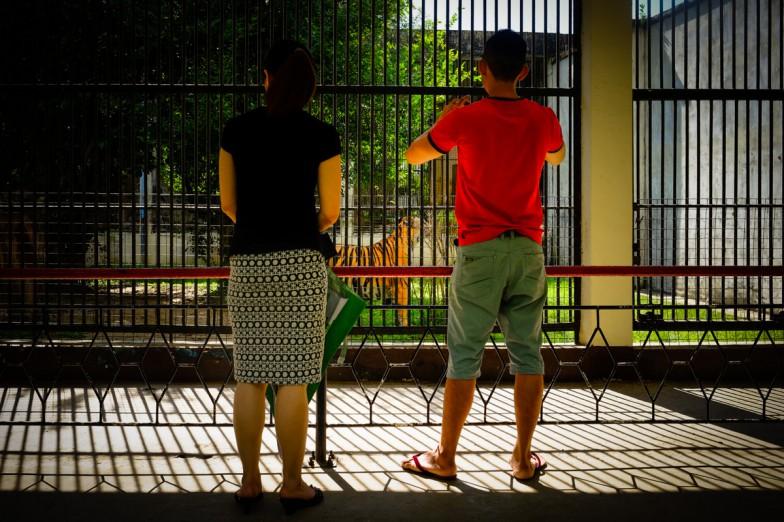 Yangon_Zoo-9